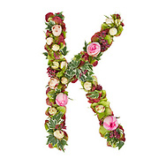 Capital Letter K Part of a set of letters, Numbers and symbols of the Alphabet made with flowers, branches and leaves on white background