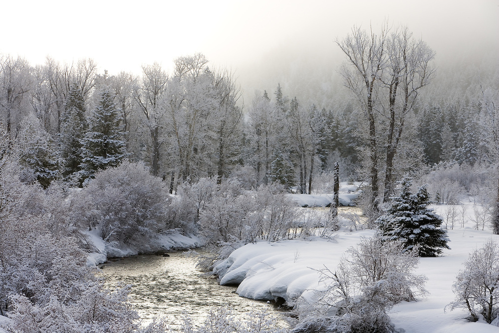 Frosted trees and lifting mist along the Wood River north of Sun Valley Idaho created a beautiful winter scene. Licensing and Open Edition Prints.