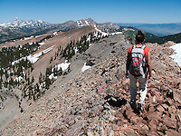 A hiker walks along the north ridge of Taylor Mountain in Wyoming's Jedediah Smith Wilderness.