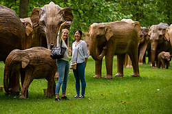 © Licensed to London News Pictures. 17/06/2021. LONDON, UK.  Women take a selfie with some of the 100 wooden elephants on display in Green Park, part of the CoExistence herd.  Handcrafted from a natural plant material called Lantana camara, the wooden elephants are currently on an installation tour of the UK to highlight a crowded planet and human encroachment on wild places.   Photo credit: Stephen Chung/LNP