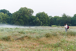 Photographer with fog in field near Big Spring,Great Trinity Forest, Dallas, Texas, USA