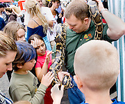 Children petting boa constrictor at outdoor exhibit. Grand Old Day Street Fair St Paul Minnesota USA