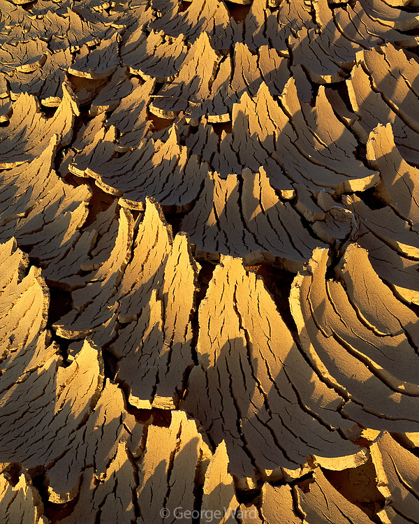 Dried Desert Wash at Sunset, Death Valley National Park, California