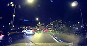 SHOCKING MOMENT GIANT TREE FALLS ONTO MOVING CAR<br /> <br /> This is the terrifying moment a car was cruising down the motorway before getting flattened by a 50 ft tall falling TREE .<br /> <br /> The driver of the pink Honda Jazz was overtaking a line of waiting cars in the left-hand lane on  Tuesday evening in Singapore.<br /> <br /> Moments later the enormous sea apple tree comes toppling down after being weakened by earlier thunder storms and heavy rain.<br /> <br /> It crushed a white van in the left lane and damaged the red Honda but incredibly, nobody was injured.<br /> <br /> Stunned onlooker Gilbert Teo said police closed the road while the mess of branches and leaves were cleared after the collapse at 8pm.<br /> <br /> He added: ''I was stuck maybe about 10 to 15 mins and I took a detour into Jalan Anggerek to make my way home.''<br /> <br /> Authorities cleared away the fallen tree from the city's Aljunied Road after some two hours, according to the The Singapore Civil Defence Force.<br /> ENDS<br /> <br /> ©Motorpest/Exclusivepix Media