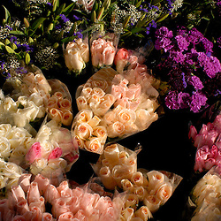 WASHINGTON, DC - Multi-colored roses, carnations, and star-gazer lilies on display at a flower vendors stall at Eastern Market...Photo by Susana Raab