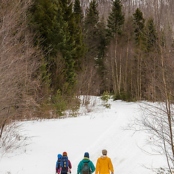 Snowshoers in Vermont's Green Mountains. Shrewsbury, Vermont.  Jim Jeffords State Forest.