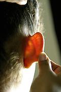 Belo Horizonte_MG, Brasil...Detalhe da orelha de uma mulher...Detail of a woman ear...Foto: LEO DRUMOND / NITRO