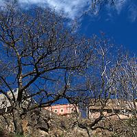 Africa, Morocco, Imlil. Imlil Berber Village and trees.