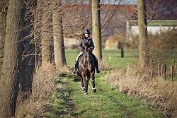 Fassaert Claudia (BEL) - Donnerfee<br /> Stal Droomhof - Vrasene 2010<br /> © Dirk Caremans