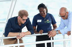 Prince Harry looks at coral reef off Grand Anse Beach in Grenada during the second leg of his Caribbean tour.