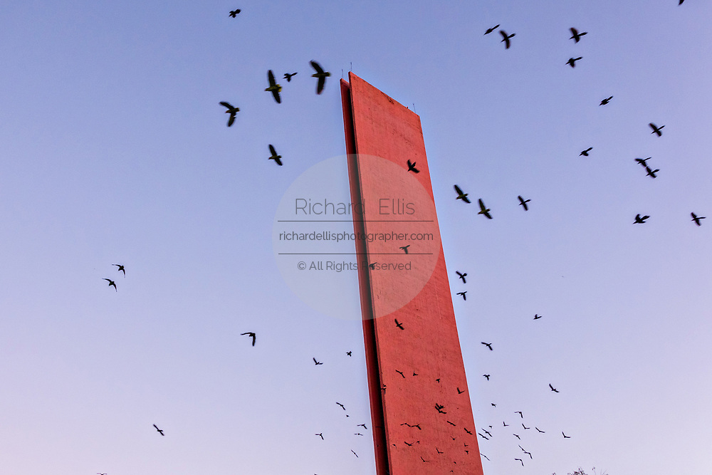 The Lighthouse of Commerce or Faro de Comercio monument is swarmed by flocks of wild parrots at sunset in the Macroplaza square in the Barrio Antiguo neighborhood of Monterrey, Nuevo Leon, Mexico. The modernist monument was designed by Mexican architect Luis Barragan and built to commemoration the100th anniversary of the Monterrey Chamber of Commerce.