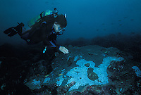 Dr. Sylvia Earle examining bleached coral.