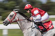 Sandown Racing 110915