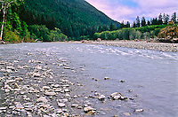 The glacier feed Hoh River as viewed from along the Hoh River Trail.  Olympic National Park, Washington.