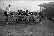 Ireland's number 9, Kelly, getting the ball away, ..Irish Rugby Football Union, Ireland v Wales, Five Nations, Landsdowne Road, Dublin, Ireland, Saturday 7th March, 1964,.7.3.1964, 7.3.1964,..Referee- A C Luff, Rugby Football Union, ..Score- Ireland 6 - 15 Wales, ..Irish Team, ..F S Keogh, Wearing  Number 15 Irish jersey, Full Back, Bective Rangers Rugby Football Club, Dublin, Ireland,  ..P J Casey, Wearing number 14 Irish jersey, Right Wing, University College Dublin Rugby Football Club, Dublin, Ireland, .. M K Flynn, Wearing number 13 Irish jersey, Right Centre, Wanderers Rugby Football Club, Dublin, Ireland, ..J C Walsh,  Wearing number 12 Irish jersey, Left Centre, University college Cork Rugby Football Club, Cork, Ireland,..K J Houston, Wearing number 11 Irish jersey, Left Wing, Queens University Rugby Football Club, Belfast, Northern Ireland,..C M H Gibson, Wearing number 10 Irish jersey, Stand Off, Cambridge University Rugby Football Club, Cambridge, England, and, N.I.F.C, Rugby Football Club, Belfast, Northern Ireland, ..J C Kelly, Wearing number 9 Irish jersey, Scrum Half, University College Dublin Rugby Football Club, Dublin, Ireland,..P J Dwyer, Wearing number 1 Irish jersey, Forward, University College Dublin Rugby Football Club, Dublin, Ireland, ..P Lane, Wearing number 2 Irish jersey, Forward, Old Crescent Rugby Football Club, Limerick, Ireland, ..T A Moroney, Wearing number 3 Irish jersey, Forward, University College Dublin Rugby Football Club, Dublin, Ireland, ..W A Mulcahy, Wearing number 4 Irish jersey, Captain of the Irish team, Forward, Bective Rangers Rugby Football Club, Dublin, Ireland,  ..M W Leahy,  Wearing number 5 Irish jersey, Forward, University college Cork Rugby Football Club, Cork, Ireland,..E P McGuire,  Wearing number 6 Irish jersey, Forward, University college Galway Rugby Football Club, Galway, Ireland,..M G Culliton, Wearing number 8 Irish jersey, Forward, Wanderers Rugby Football Club, Dublin, Ireland, ..N A Murphy, Wearing numb