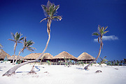 Hotel Club Akumal Caribe, Akumal, Yucatan Peninsula, Mexico ( Caribbean Sea / Western Atlantic Ocean )