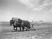 9969-2376. Compressing the surface of the soil for planting corn. V. Siri, Portland, Oregon. April 11, 1936.