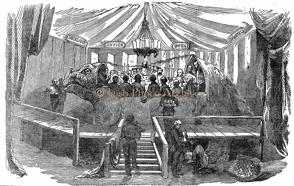 Dinner given by Waterhouse Hawkins (the maker) to celebrate the completion of two Iguanadon statues to be put on display at the Crystal Palace, Sydenham, New Year's Eve, 1853. Guests included Richard Owen, E Forbes, the geologist Prestwick and the ornithologist Gould. From 'The Illustrated London News', January 1854.
