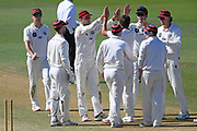 Canterbury players celebrate a wicket in the Plunket Shield Cricket match, Central Districts v Canterbury, McLean Park, Napier, Tuesday, April 06, 2021. Copyright photo: Kerry Marshall / www.photosport.nz