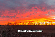 63893-03009 Sunrise over field,  Marion County, IL