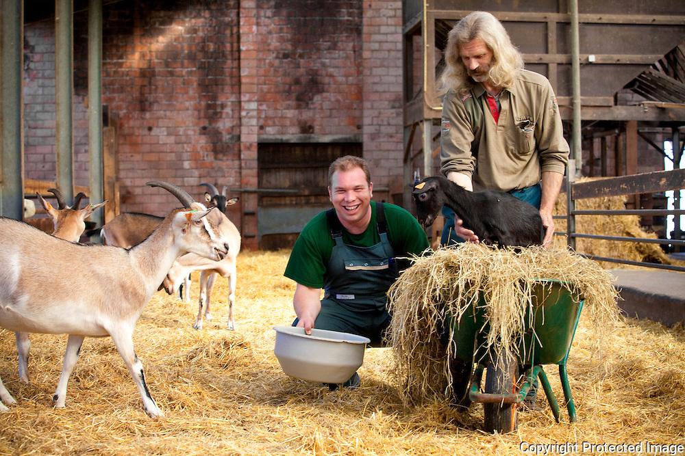 362113-Zorgboerderij De Stolp-Jan Van Tendeloo (groen) met Wies Cambré en Blackie (zwarte schaap)Haverbeemden Geel