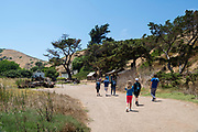 Visitors approach the former Scorpion Ranch, which is now the primary visitation location on Santa Cruz Island, Channel Islands National Park, California, USA.