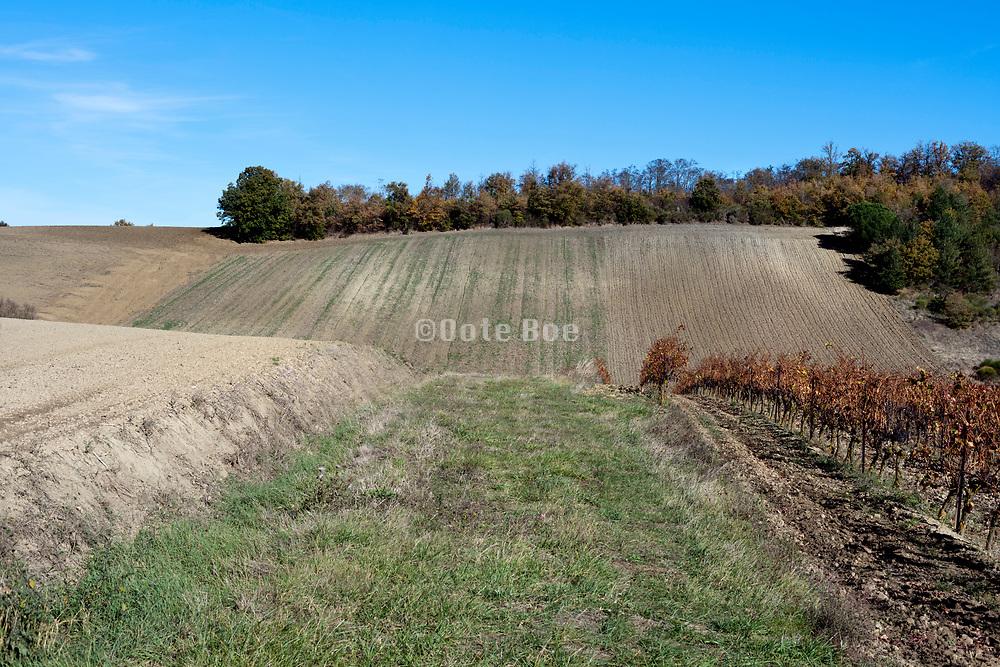agricultural landscape France in the Languedoc Aude