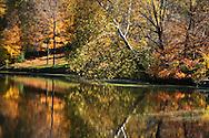A Colorful Scene, Trees Along A Lake Shore In Autumn, Sharon Woods, Southwestern Ohio, USA