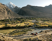 View over Baba Tangi.  This is a typical Wakhi village. All this agricultural land has been gained on rocks, moving earth, digging water channel from the mouth of the glaciers. This is typical subsistence agriculture. The life of the Wakhi people, in the Wakhan corridor, amongst the Pamir mountains. Trekking with Paul Salopek.