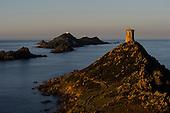 Corsica-Genoa's empire