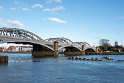 Barnes Greater London. 1st March 2020, Pre Boat Race Fixture, Oxford Brookes B crew, approaching  Barnes Rail Bridge, on their return to Putney Championship Course, Putney to Mortlake, River Thames, [Mandatory Credit: Peter SPURRIER/Intersport Images],