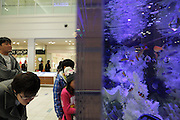 looking at tropical fish in a large glass aquarium in a shopping mall Japan