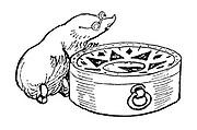 Mole with compass (illustration)