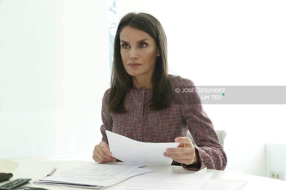 Queen Letizia of Spain attends a videoconference with Youth Board with which they have analyzed the added effects of the pandemic on adolescence and youth and the 'fake news' as a social risk at Zarzuela Palace on May 19, 2020 in Madrid, Spain