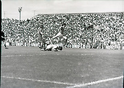 League of Ireland vs Liverpool FC.    (M87)..1979..18.08.1979..08.18.1979..18th August !979..In a pre season friendly the League of Ireland took on Liverpool FC at Dalymount Park Phibsborough,Dublin. The league team was made up of a selection of players from several League of Ireland clubs and was captained by the legendary John Giles. Liverpool won the game by 2 goals to nil..The scorers were Hansen and McDermott...Picture shows goalkeeper, Alan O'Neill, bravely gathering the ball despite the attentions of both defender and attacker.