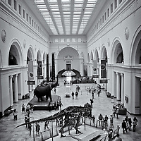 Natural History Museum<br />editted, converted to B&W 2/27/15
