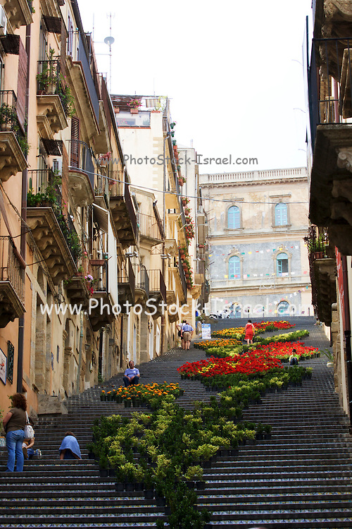 Italy, Sicily, Caltagirone, Flowers decorate the ceramic tiled steps of the Scalinata. The Church of Santa Maria in the background