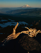 Mount Saint Helens National Monument