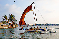 Sri Lanka, province de l'ouest, district de Gampaha, Negombo, village des pecheurs, catamaran à voile // Sri Lanka, Western Province, Negombo, catamaran, Traditional Fishing Boat