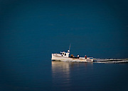 A small white fishing boat heads out into the cool blue waters of the Bay of Fundy in Nova Scotia, Canada.