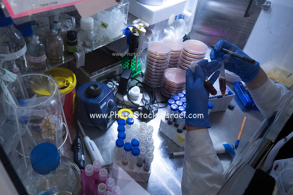 Virus testing laboratory