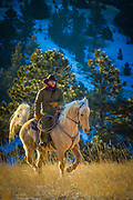 Cowboy on a Palomino horse on ranch in northeastern Wyoming