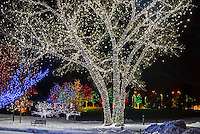 A Hudson Christmas (holiday light show at Hudson Gardens), Littleton, Colorado USA.