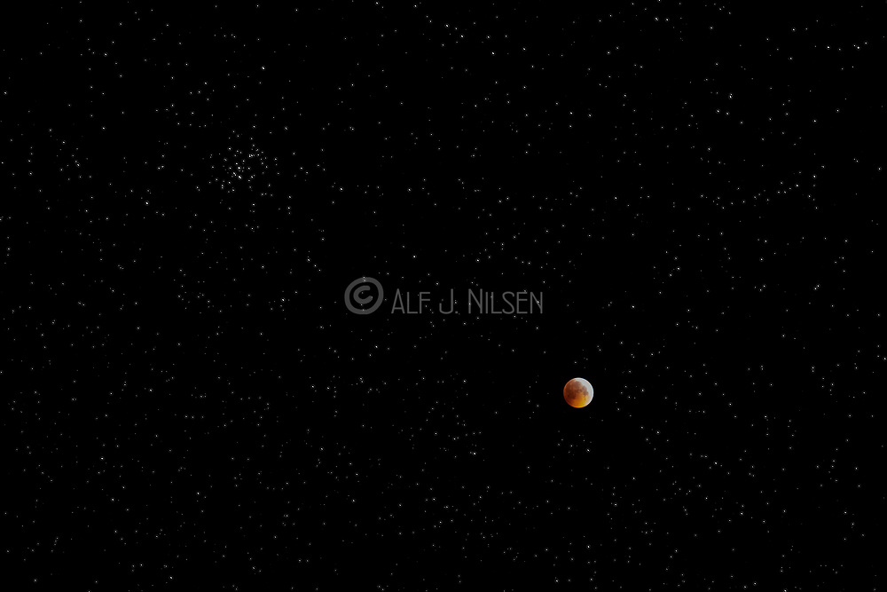 The total lunar eclipse from 21. January 2019. The moon is in the constellation Cancer and the open cluster Messier 44 (Beehive Cluster) is seen in the centre of the frame.  Photo from Hidra, south-western Norway, at 05:30 local time.