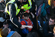 Thousands of Extinction Rebellion activists took over 5 bridges in Central London and blocked them for the day, November 17 2018, Central London, United Kingdom. Lambeth Bridge; a young activist is arrested and taken away. Around 11am people on all bridges sat down in the road and blocked traffic from coming through and stayed till late afternoon. The actvists believe that the government is not doing enough to avoid catastrophic climate change and they demand the government take radical action to save future generations and the planet. Many are willing to be arrested peacefully protesting and up to 80 were arrested on the day. Extinction Rebellion is a grass root climate change group started in 2018 and has gained a huge following of people commited to peaceful protests and who ready to be arrested. Their major concern is that the world is facing catastropohic climate change and they want the British government to act now to save future generations.
