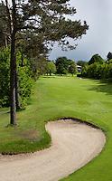 HERKENBOSCH- Hole 16, rood 7 Golfbaan Herkenbosch bij Roermond. FOTO KOEN SUYK