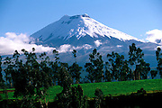 ECUADOR, HIGHLANDS Avenue of Volcanoes with Cotopaxi