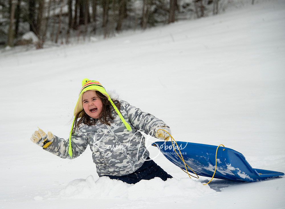 """Scarlet spent her """"Snow Day"""" playing in the snow at the sliding hill at Memorial Park in Laconia.  (Karen Bobotas Photo/for The Laconia Daily Sun)"""