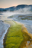 Thermophilic algae and bacteria color a runoff stream of Sapphire Pool in Biscuit Basin, Yellowstone National Park