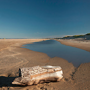 A sawn log delivered by the tide on Plum Island at the Parker River Wiildlife Refuge, Newbury, MA